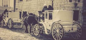 Carriage Liability Insurance