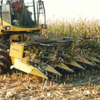 crop insurance - forage harvestor crop insurance