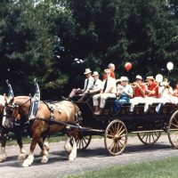 equine insurance - carriage liability insurance