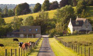 homeowner insurance - hobby farm insurance