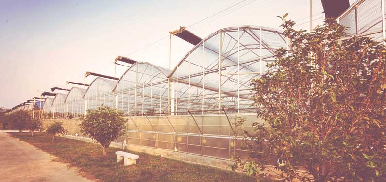 Greenhouse Nursery Insurance