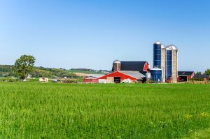 agri-business terms - farm