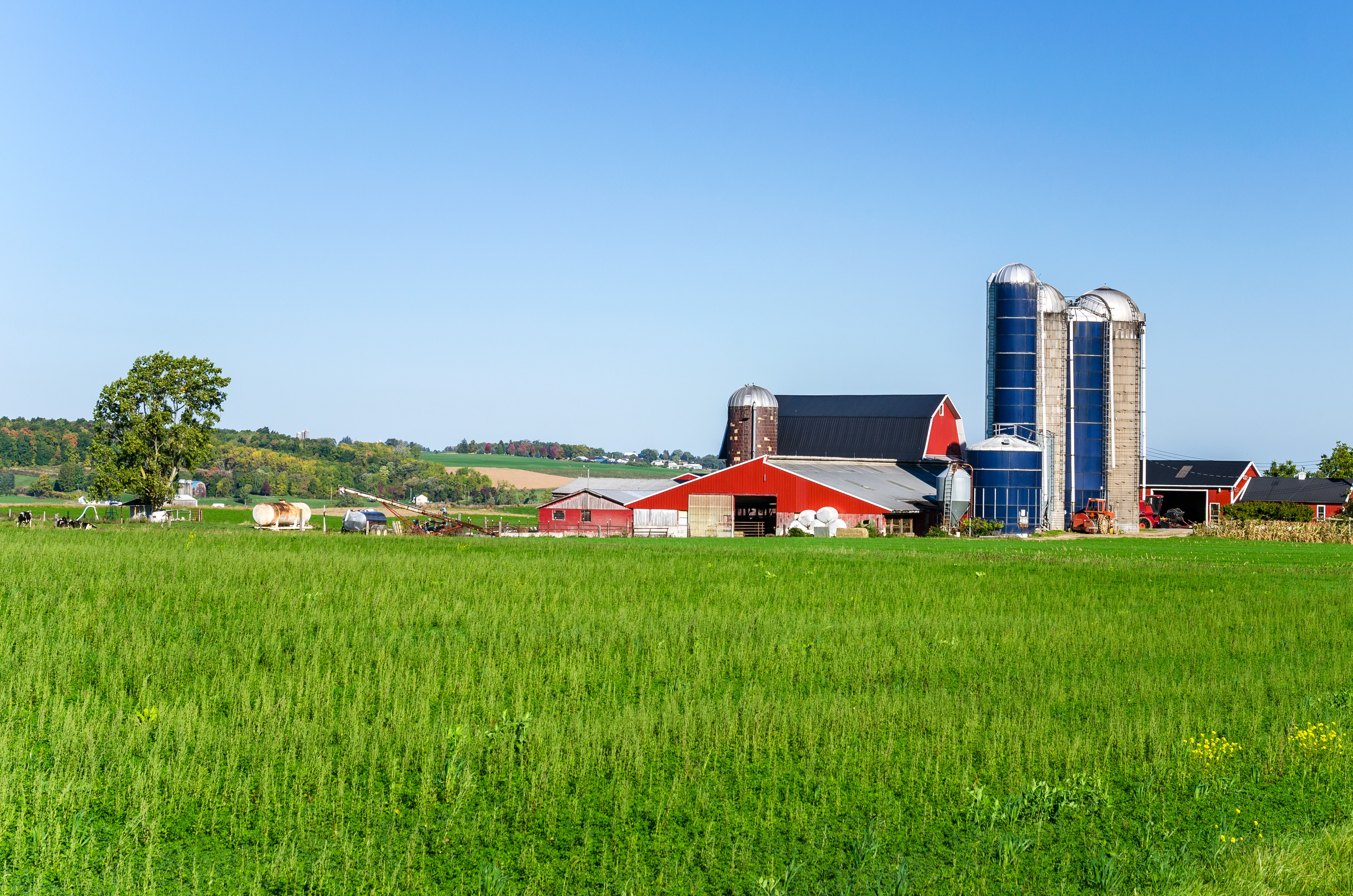 6 Farm/Agri-Business Terms The Start-Up Farmer Should Know