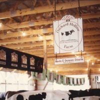 LGM Dairy Insurance