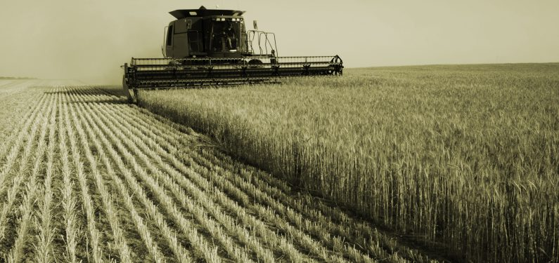 crop insurance coverage