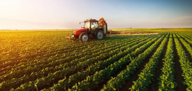 red tractor in a soybean field
